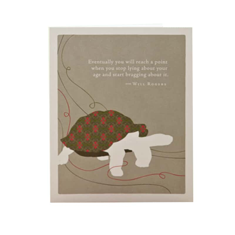 Turtle Birthday Card Paper August Haven Furniture Home Dcor