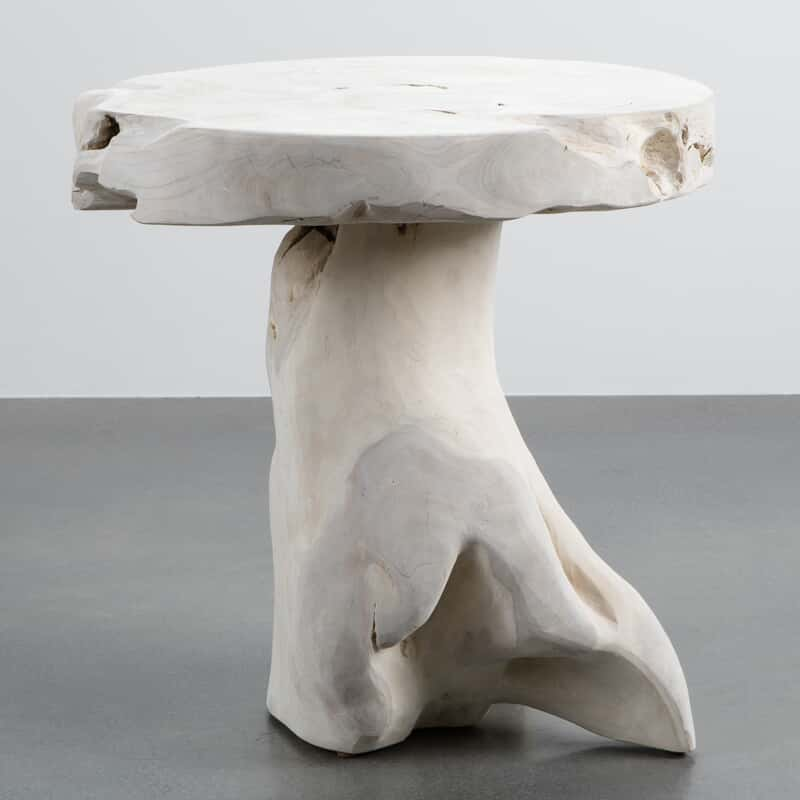 Awe Inspiring Mushroom Table 3 Download Free Architecture Designs Crovemadebymaigaardcom